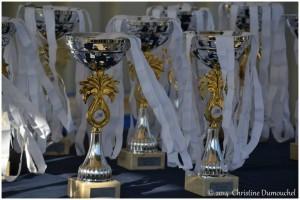Récompenses SOlogne 2014